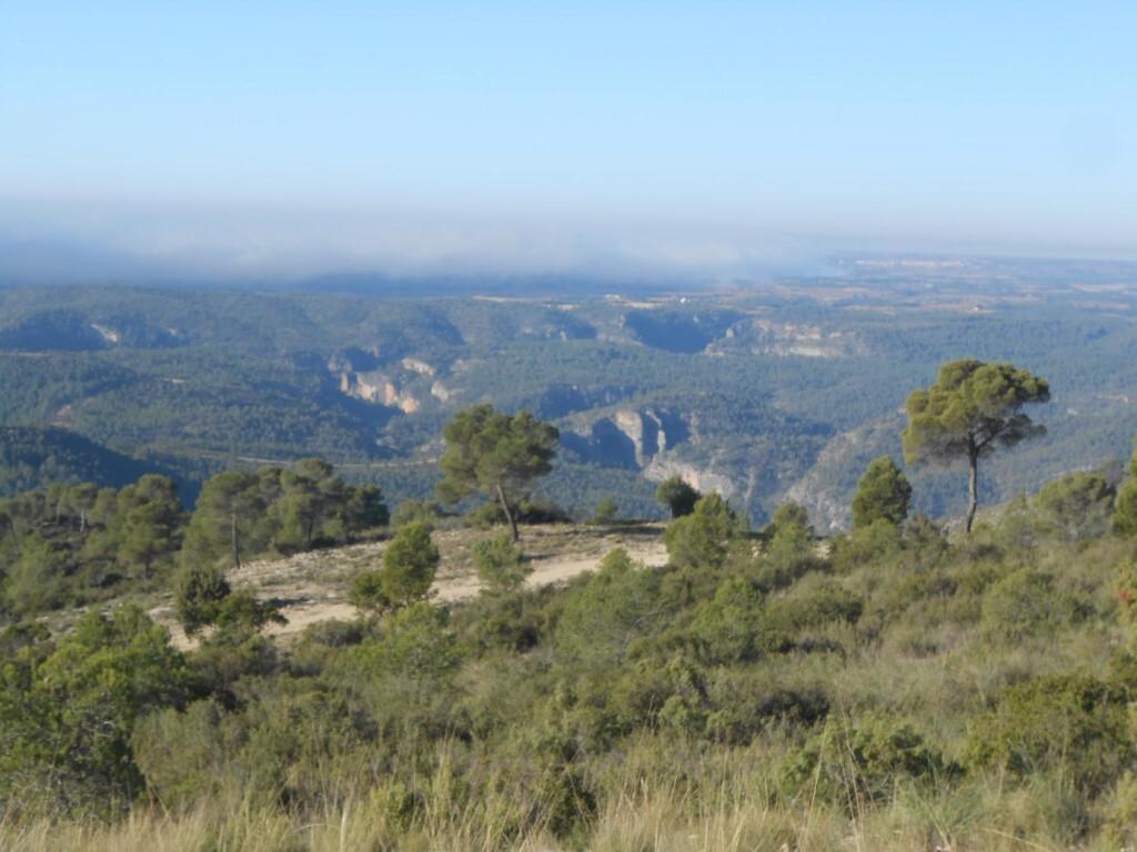 Foto dia internacional de las montañas buena.JPG