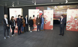 MOVIMIENTOESPOLÍN DE AMSTEL LLEGA AMSTEL ESPOLÍN COLLECTION (5)