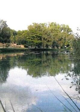 Zona del río a su paso por Bugarra que se quiere acondicionar.