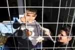 Un niño detenido junto a su madre por un periodo de 24 horas por la policía fronteriza de Hungría (© ACNUR/UNHCR/Kitty McKinsey)