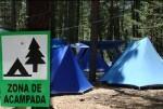 El Consell recomienda responsabilidad y precaución a los visitantes de los montes valencianos durante las vacaciones de Semana Santa y Pascua.