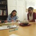El nuevo modelo de servicios sociales permitirá cuadruplicar la plantilla de profesionales en los ayuntamientos de Alicante.