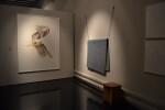 Icky Uslé, de la galeria Espai Tactel, s'alça amb l'IV premie Adquisició fundació la Canyada Blanch (2)