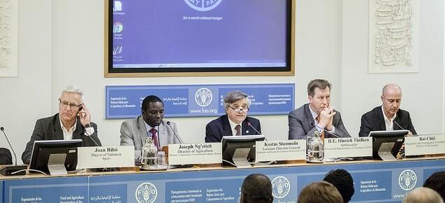 Ribó en la Sesión del Consejo de la FAO celebrada en Roma.