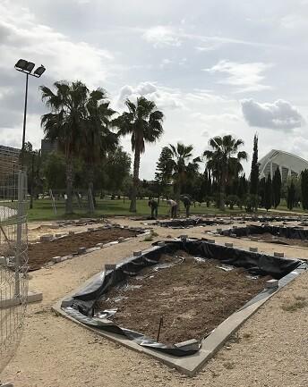 Rosaleda de los jardines del Túria.