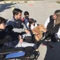 Teràpia gossos