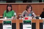 Valencia instará a la Comisión Europea aprobar una directiva que evite la publicidad sexista.