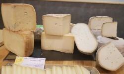 manglano quesos de la comunidad valenciana (15)
