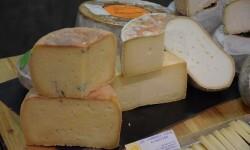 manglano quesos de la comunidad valenciana (46)