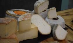 manglano quesos de la comunidad valenciana (48)