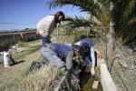 07-05-2017 Castellón intensifica la lucha contra la plaga de mosquitos ante la subida de las temperaturas 2