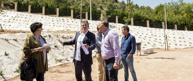 Bort visita el espacio degradado en Xàtiva. (Foto-Abulaila).