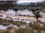El Ayuntamiento de Rojales e Hidraqua organizan una jornada sobre Meteorología y Cambio Climático.