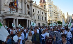 Por la libertad de enseñanza manifestación en Valencia de educación concertada con la supresión de conciertos 20170506_172849 (329)