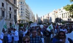 Por la libertad de enseñanza manifestación en Valencia de educación concertada con la supresión de conciertos 20170506_172849 (336)