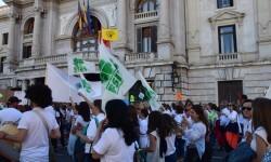 Por la libertad de enseñanza manifestación en Valencia de educación concertada con la supresión de conciertos 20170506_172849 (349)