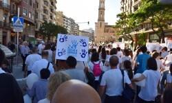 Por la libertad de enseñanza manifestación en Valencia de educación concertada con la supresión de conciertos 20170506_172849 (380)