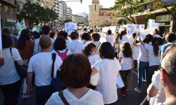 Por la libertad de enseñanza manifestación en Valencia de educación concertada con la supresión de conciertos 20170506_172849 (381)