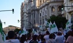 Por la libertad de enseñanza manifestación en Valencia de educación concertada con la supresión de conciertos 20170506_172849 (427)