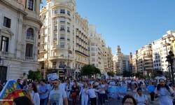 Por la libertad de enseñanza manifestación en Valencia de educación concertada con la supresión de conciertos 20170506_172849 (72)