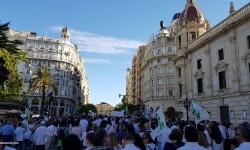 Por la libertad de enseñanza manifestación en Valencia de educación concertada con la supresión de conciertos 20170506_172849 (76)