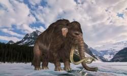 Algunos datos importantes de los dinosaurios