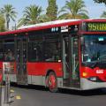 EMT y Policía Local se unen para garantizar el mejor funcionamiento del transporte público y de la circulación global. (Autobús).