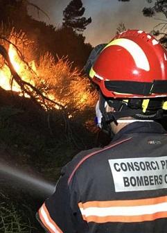 El fuego afecta a una zona de masa forestal y cultivos.
