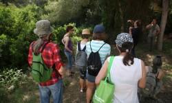 Las adaptaciones ecológicas de las plantas de la Devesa protagonizan la visita guiada de junio para 40 personas.