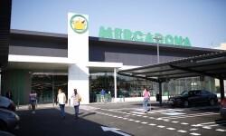 Mercadona inaugura su nuevo modelo de tienda eficiente en Vila-real (Castellón).