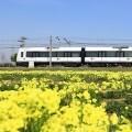 Tren del FGV.