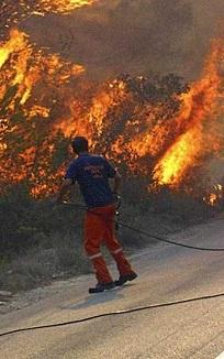 Un hombre lucha contra las llamas del incendio en Portugal.