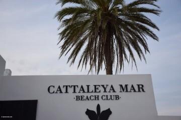inauguran en el Puig el nuevo Beach club Cattaleya mar (25)