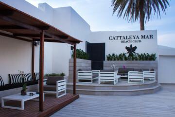 inauguran en el Puig el nuevo Beach club Cattaleya mar (7)