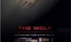 the-wolf-kvQB-U30894267000IFH-624x385@RC