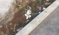 072917 GPP Ramon-Llin canalon Alameda 3