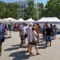 Dia de l'Orxata y la Xufa de València (45) (Medium)