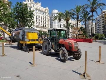 Dia de l'Orxata y la Xufa de València (65) (Medium)