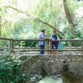 La Diputación trabaja en la recuperación medioambiental y paisajística de los barrancos de Quatretonda.