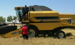 La Generalitat pide extremar la precaución en el uso de maquinaria agrícola ante el riesgo de incendios.