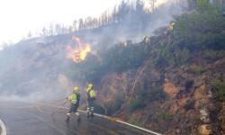bomberos-trabajan-extincion-incendio-Gatova_EDIIMA20170628_1037_4
