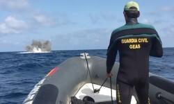 La Armada desactiva la bomba de la II Guerra Mundial hallada en aguas de Tabarca