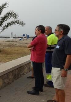 Josep Bort visita el ecosistema dunar de la playa de Puçol.