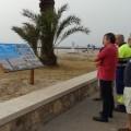 La Diputación promueve actuaciones de restauración y mantenimiento del ecosistema dunar en el litoral valenciano.
