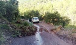 Pista_forestal_danos_1-1024x602
