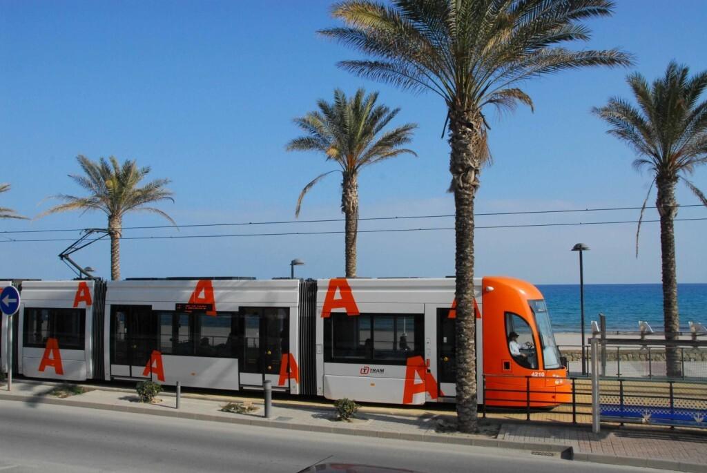 VIV_Tram_d'alacant_ha_transportado_FOTO_(EMBARGADA_HASTA_EL_15-08)