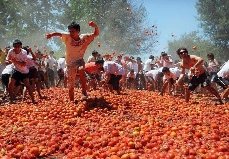 la-tomatina-chile