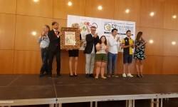 Concurso Internacional de Paellas de Sueca 2017 acto entrewga premios (11)