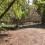 L'Ajuntament condiciona un solar per a facilitar el desenvolupament del Pla Colonial Felí