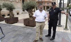 Zonas Castellón para mejoras de seguridad 07